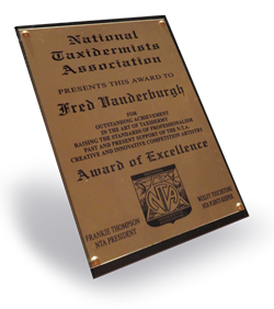 National Taxidermists Association Award of Excellence
