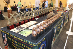 National Taxidermists Association Convention & Competition