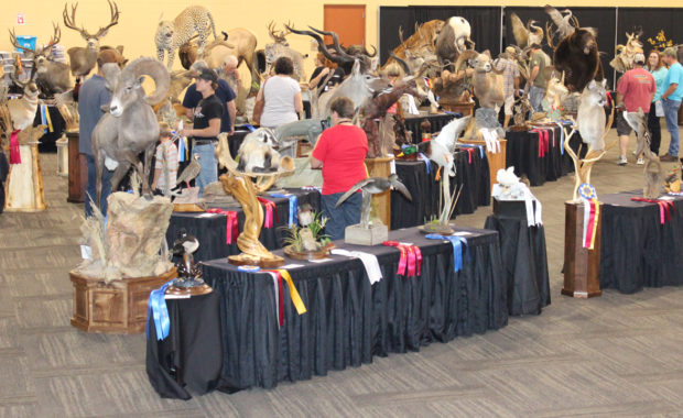 2017 National Taxidermists Association Convention