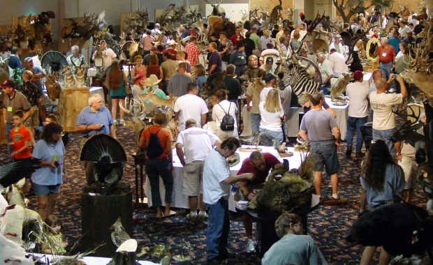National Taxidermists Association Convention, Competition, & Trade Show