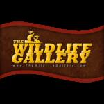 Wildlife Gallery