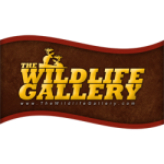 Wildlife Gallery